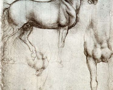 35-leonardo-da-vinci-horse_study-credit_windsor_castle_london.jpg